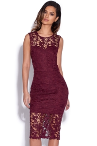 Crochet Lace Bodycon Dress
