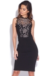 Lace Panel Bodycon Dress