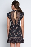 Floral Print Lace Panel Mini Dress