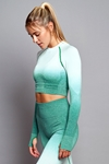 Ombre Seamless Long Sleeve Crop Top